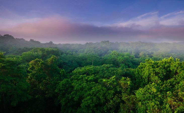 Panama Green Season
